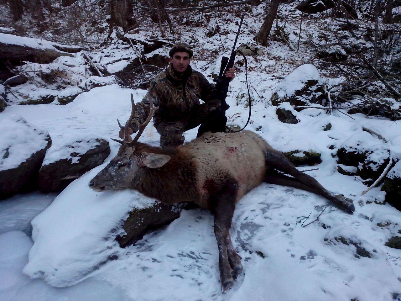 Охота на оленя andy kruglov 5 лет назад.