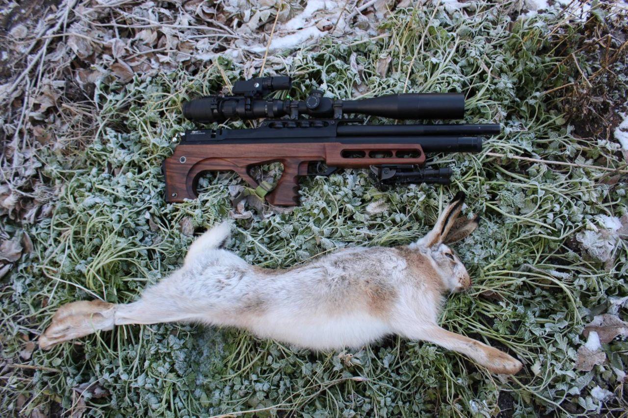Фото затвора самострела на зайца