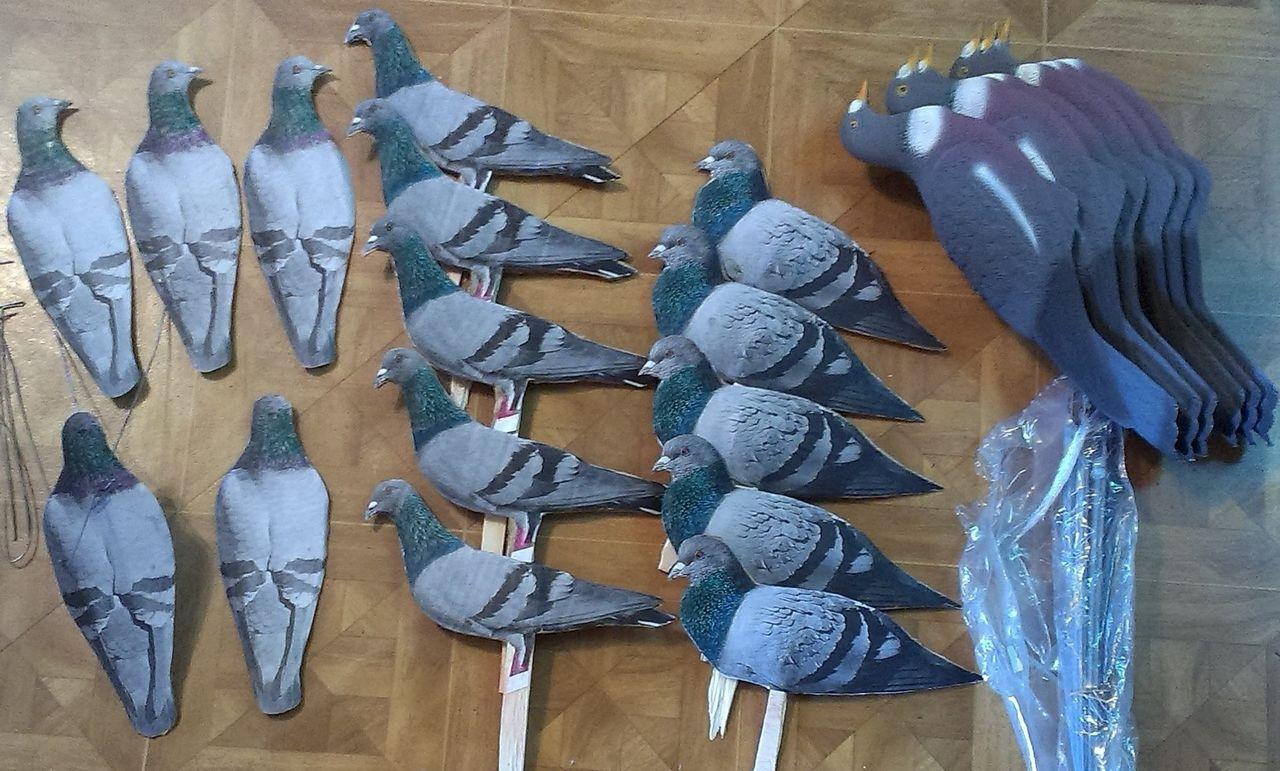 Профиля для охоты на голубя своими руками