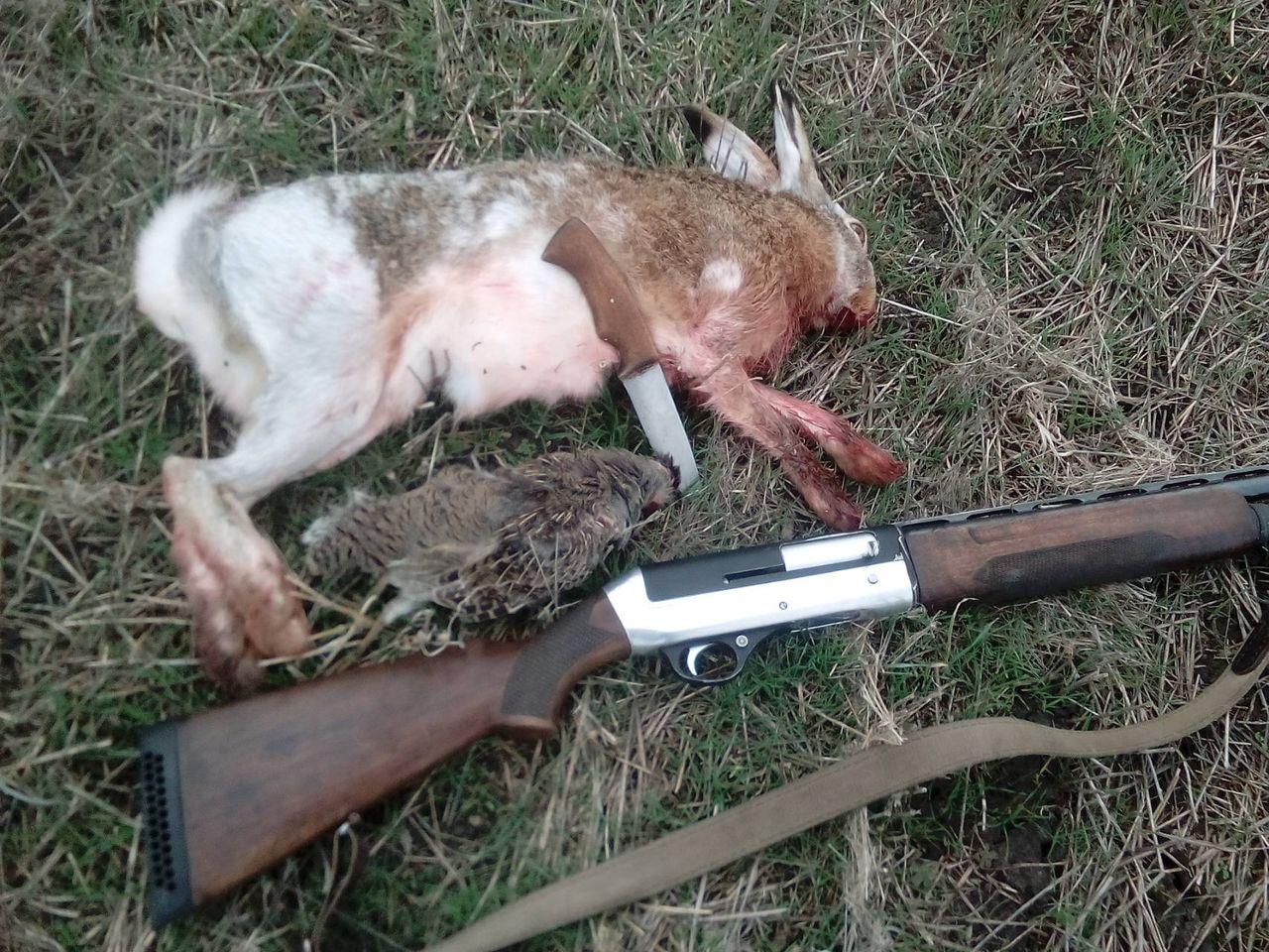 портретная фото затвора самострела на зайца была