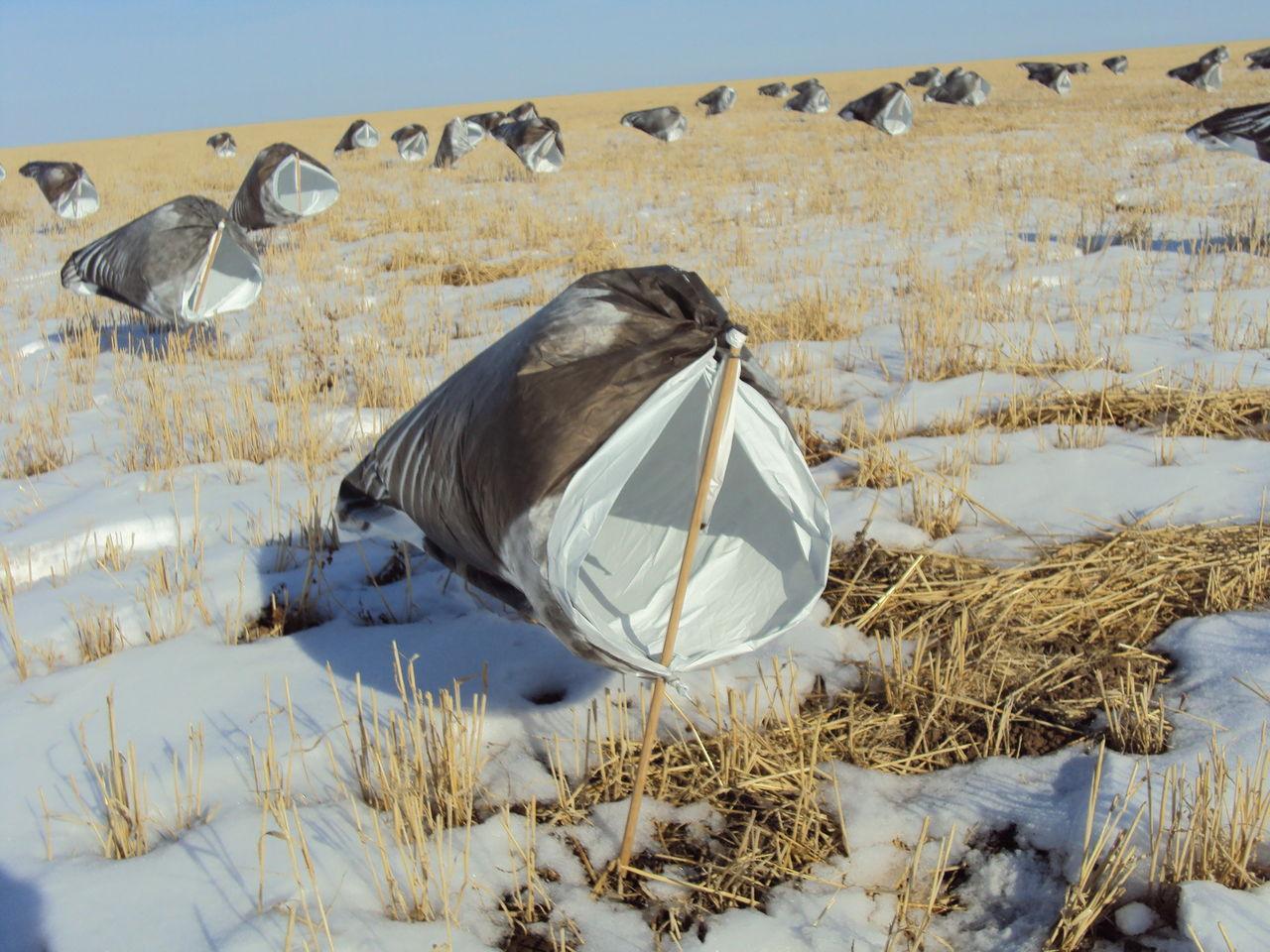 Самодельные профиля гусей и чучела уток для охоты - На