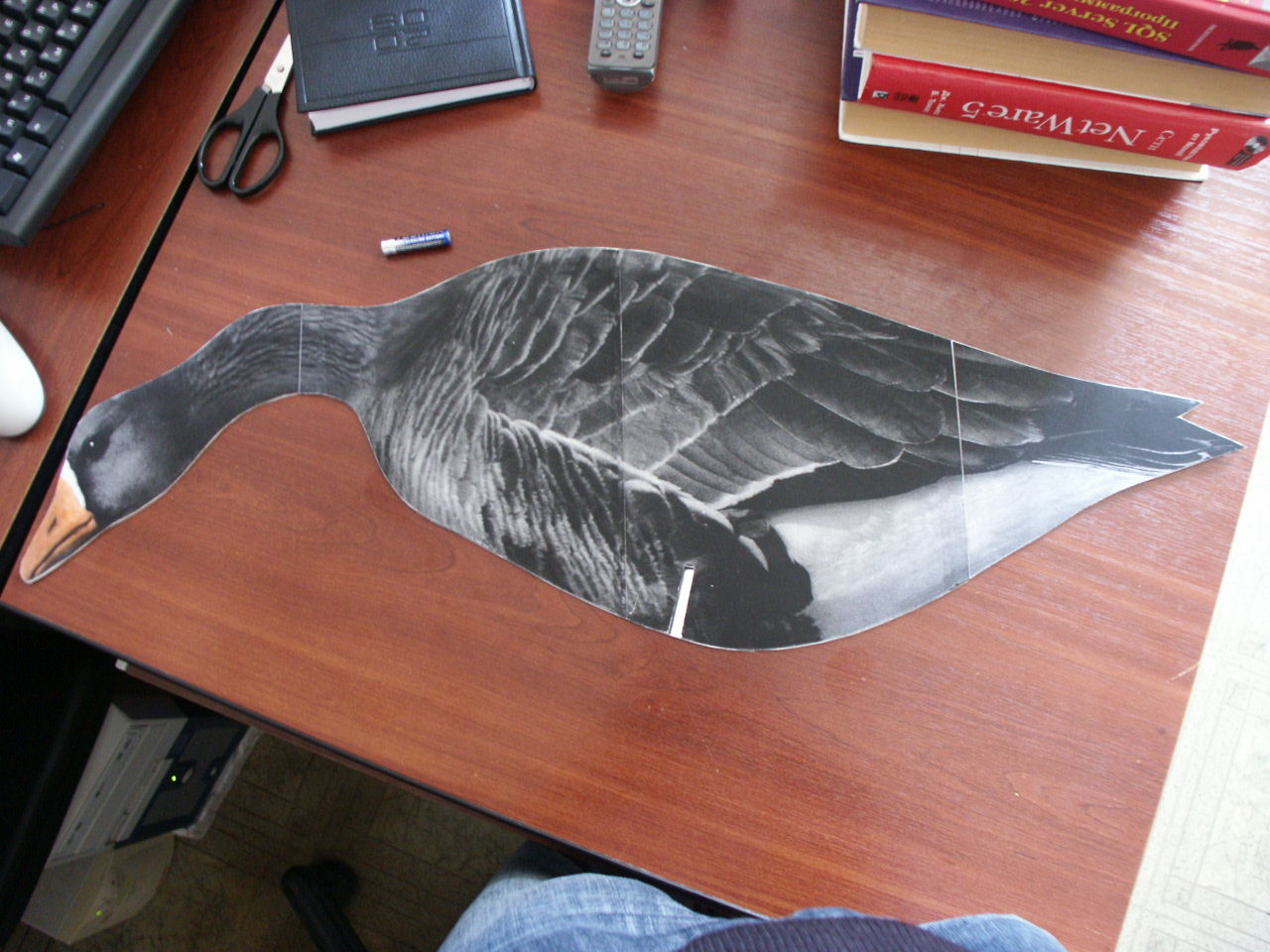 Покраска профилей гуся