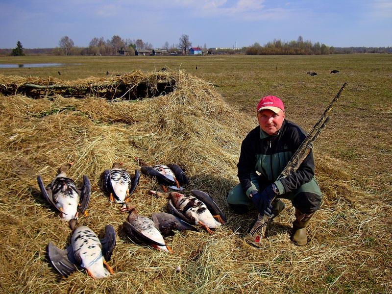 охотничьи приманки для гусей