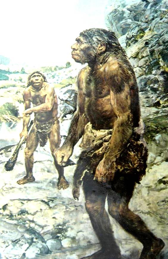 Неандертальские истоки генезиса человеческих рас предварительные выводы из научных открытий неандертальский