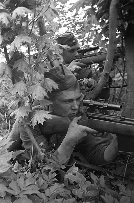 военные фотографии с описаниями