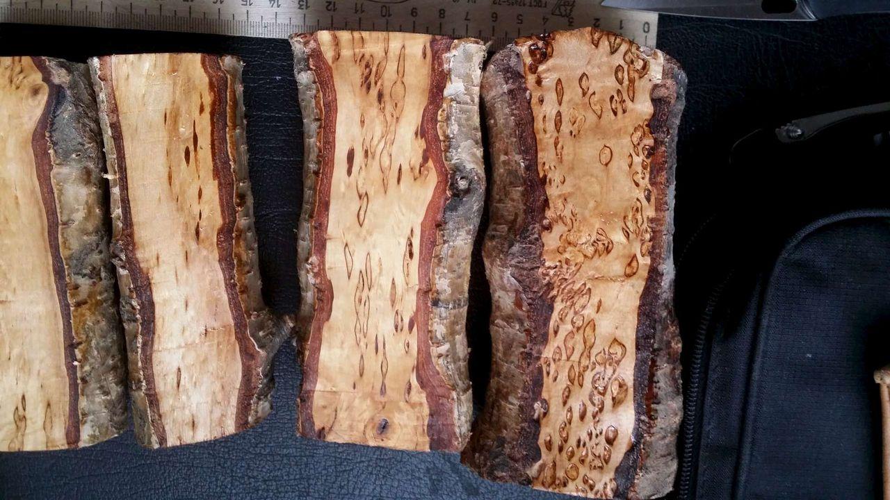 остановить карельская береза фото дерево в разрезе необычных стилей современности