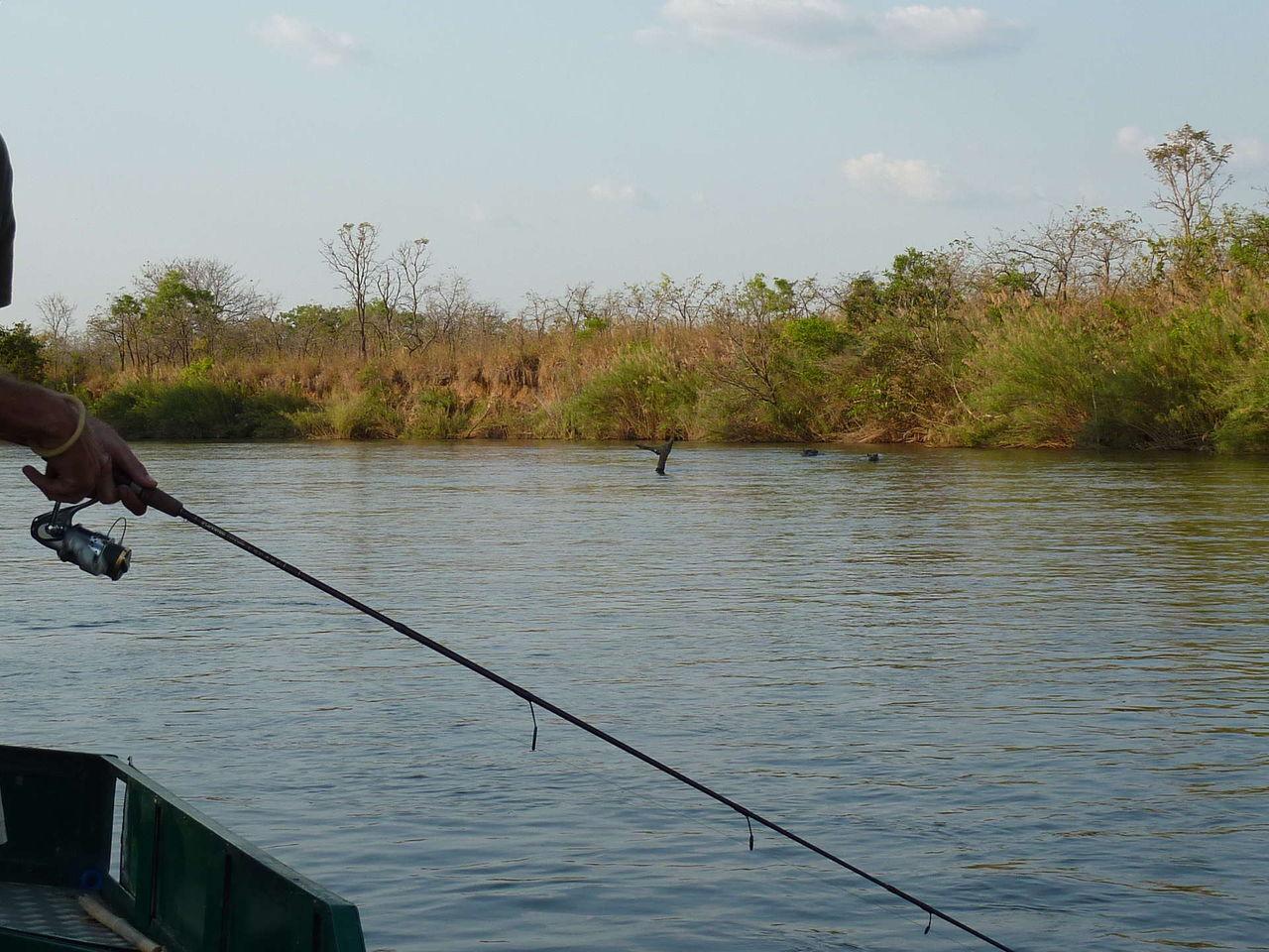 рыбалка буденновск буйвола