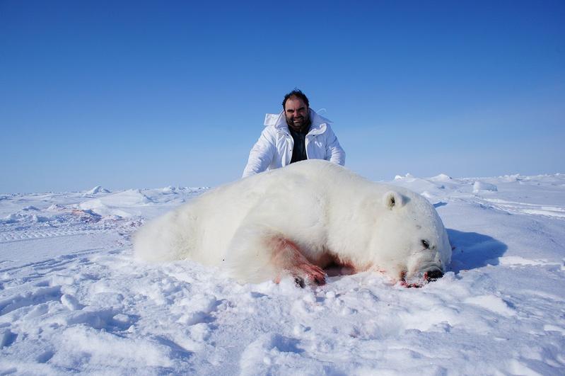 Картинки арктика и человек