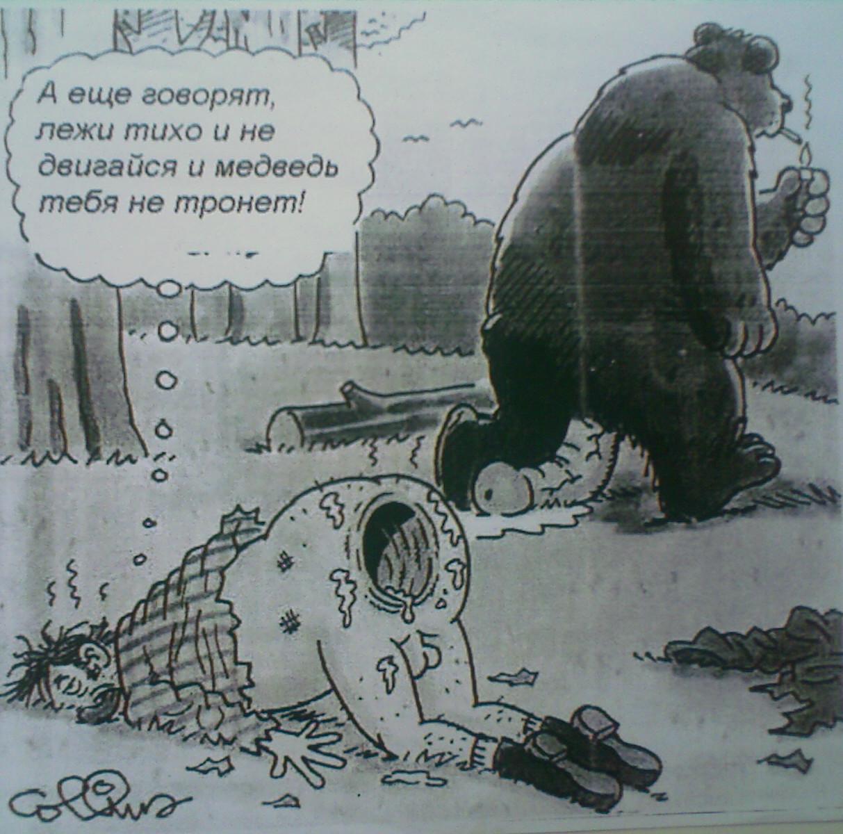 Картинки медведь и заяц приколы, картинки