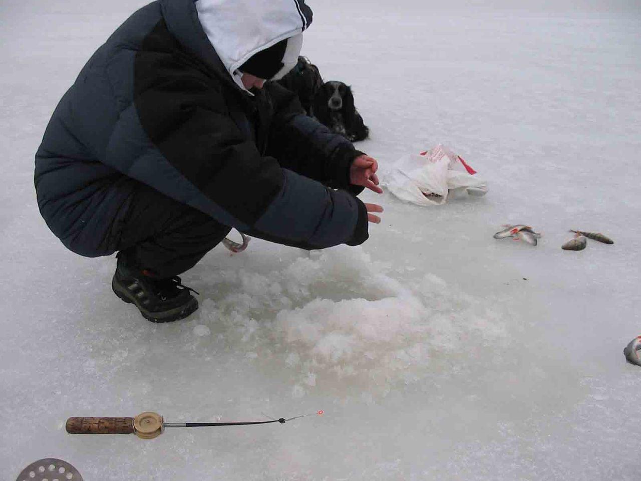 зимняя рыбалка фунтусова фото ряд самосвалов краз