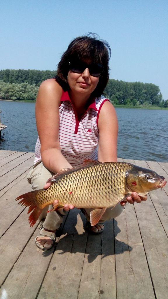 отчет о рыболовных базах