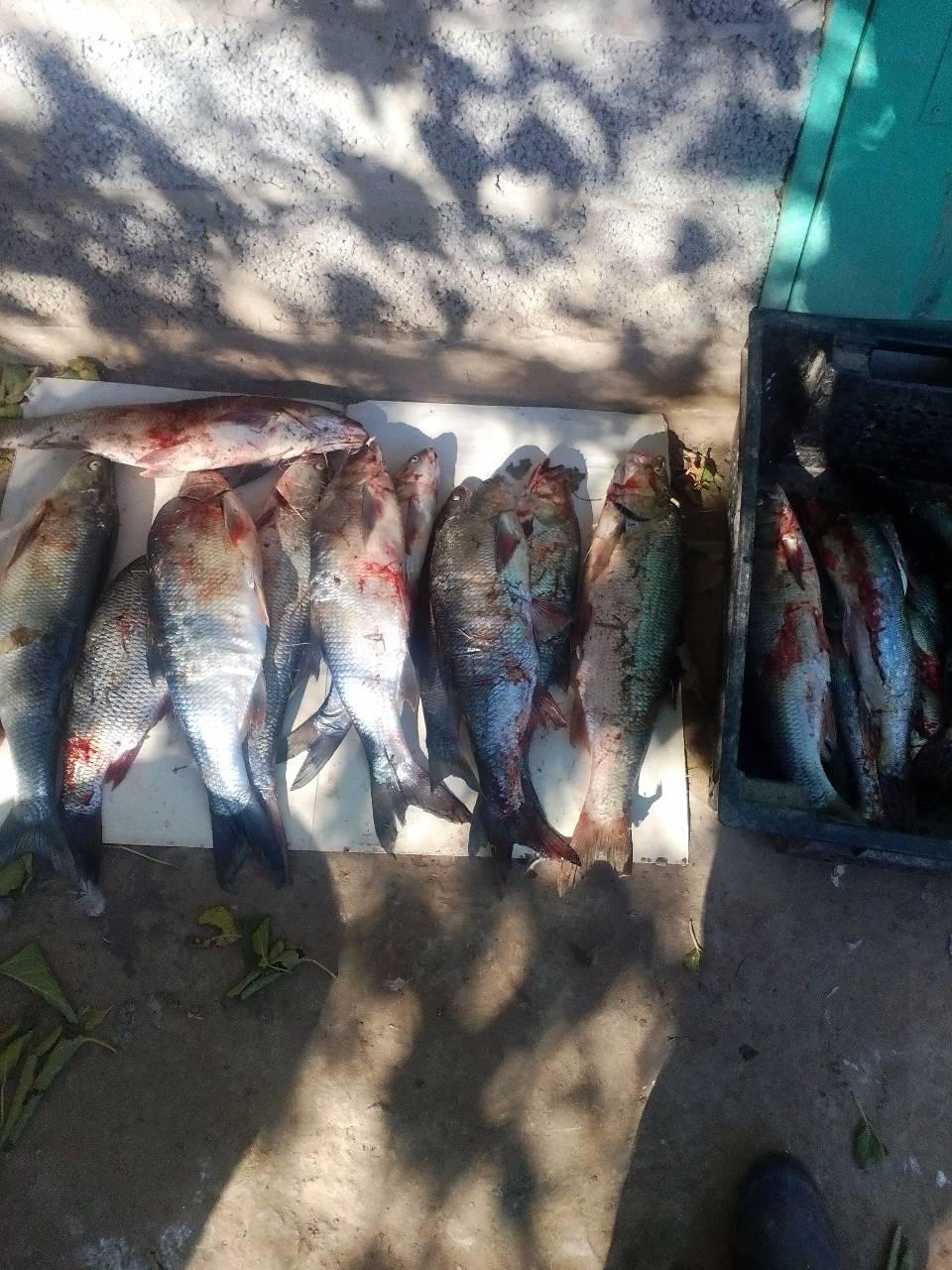 гостевой дом рыбалка в астраханской области