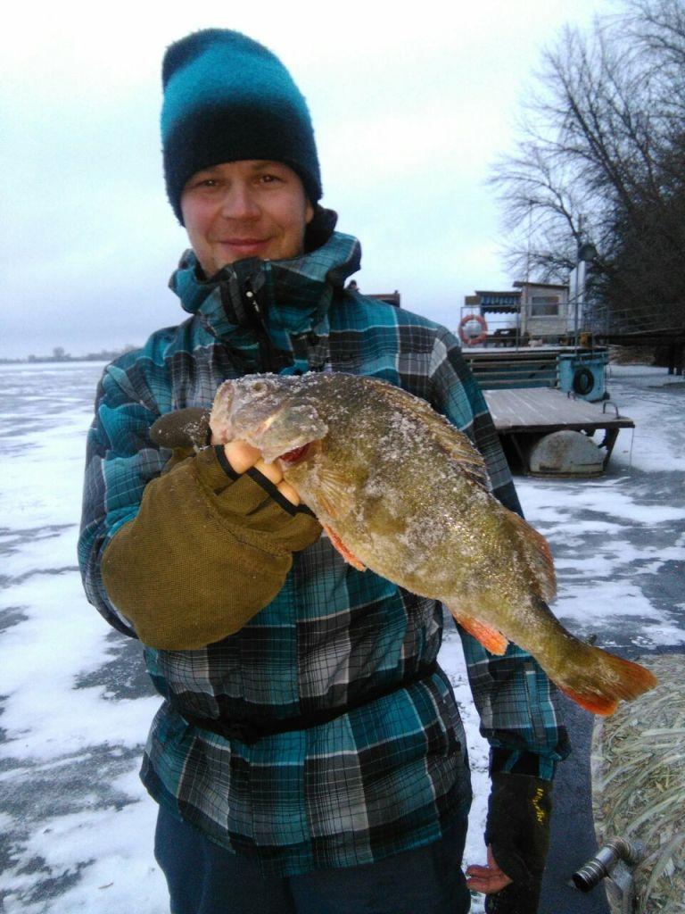 рыбалка в дельте волги московская