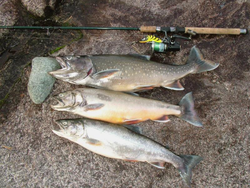 рыбалка на пяозере аренда домиков