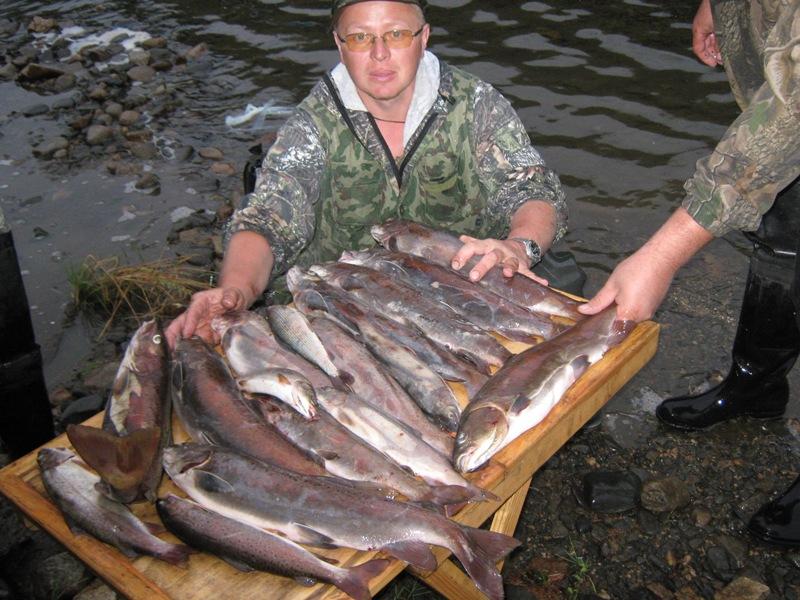 видео рыбная ловля  во  забайкалье