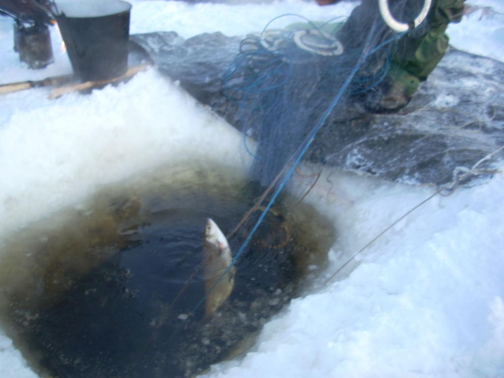 купить наплава рыболовной сети