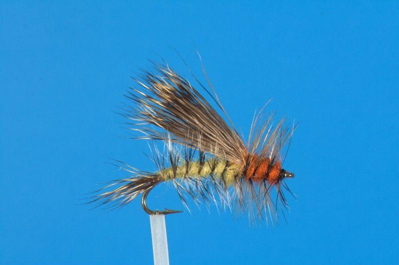 фото ловим мух