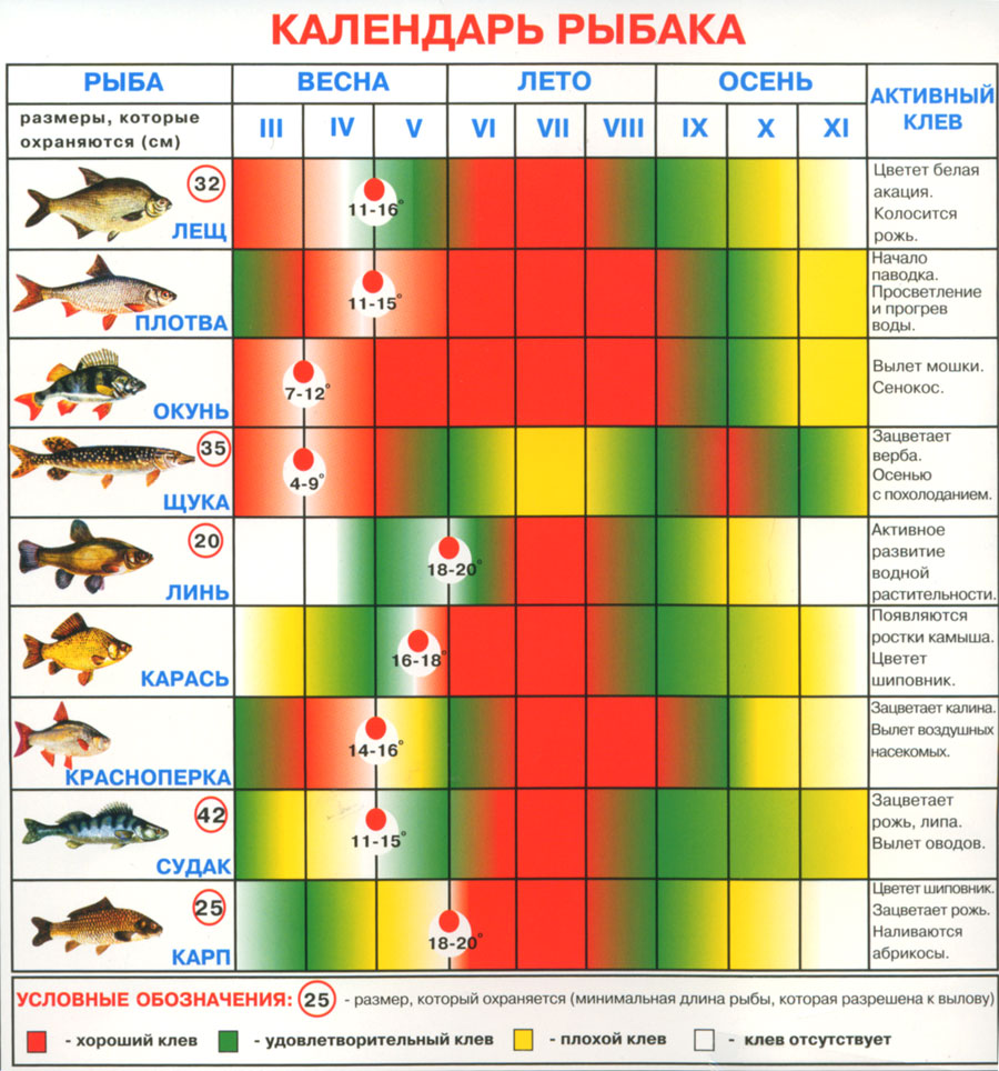 календар для рыбалки