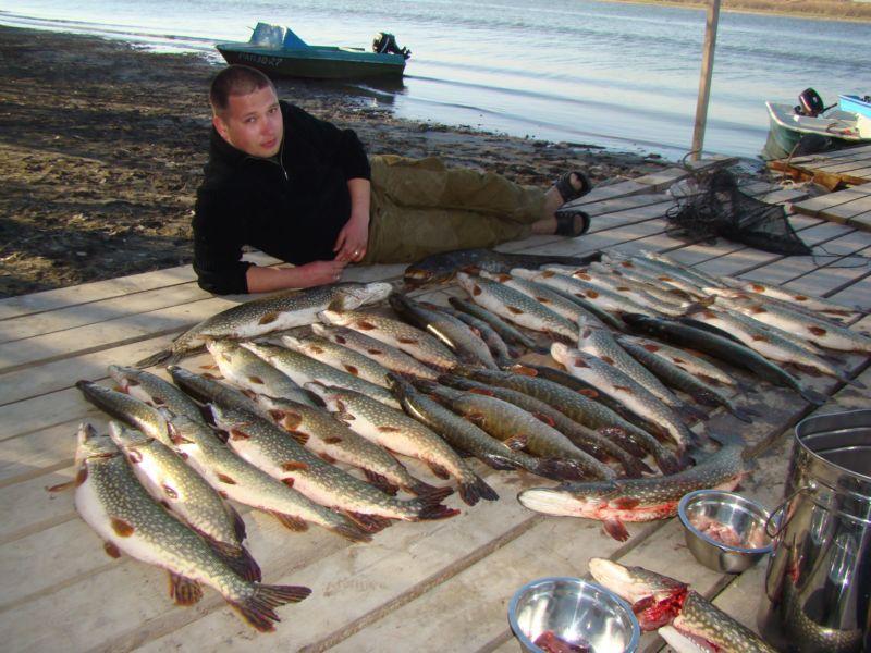 купить червей для рыбалки 24 часа