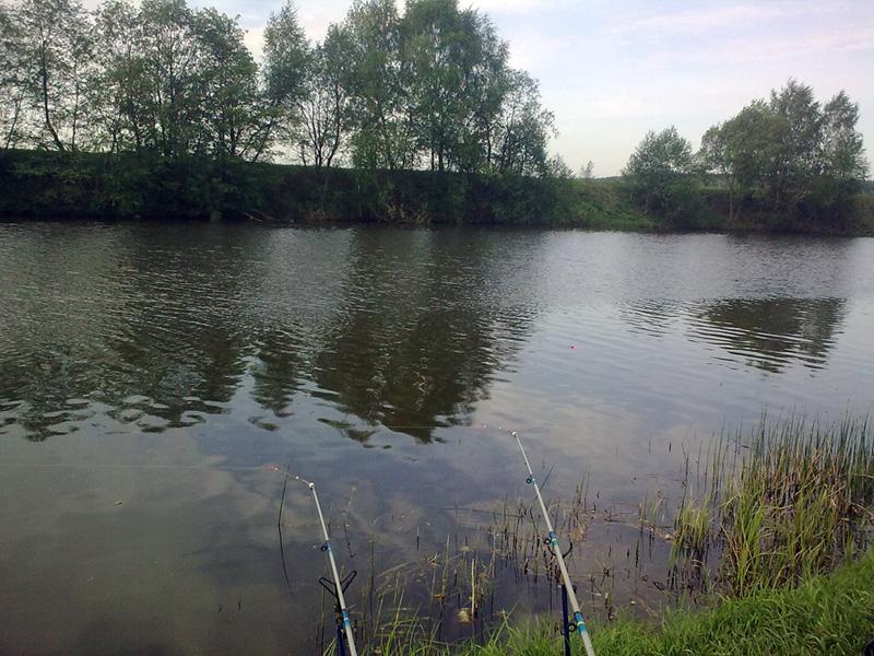 рыбалка на протве в районе шемякино
