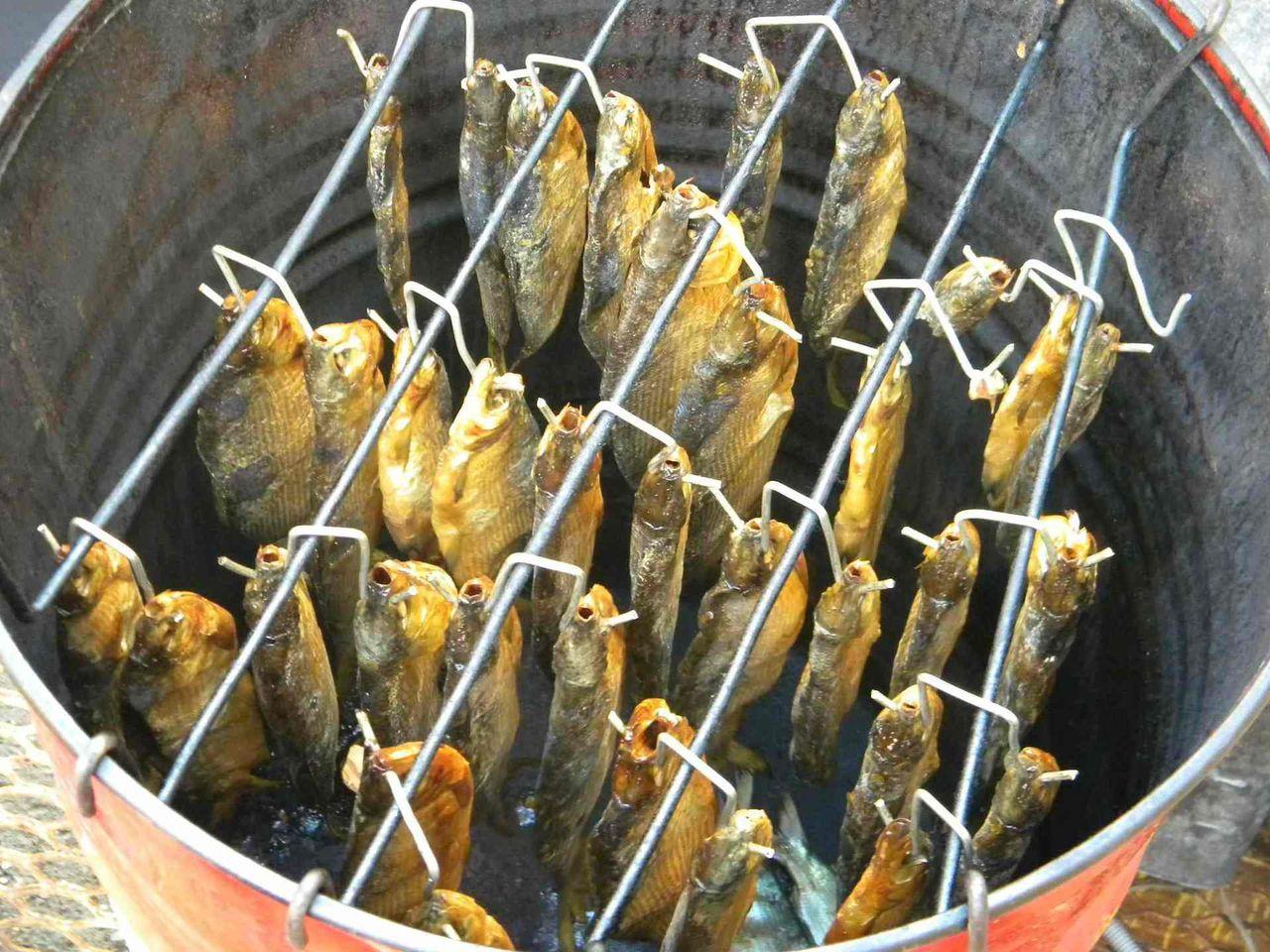 В чем коптить рыбу в домашних условиях