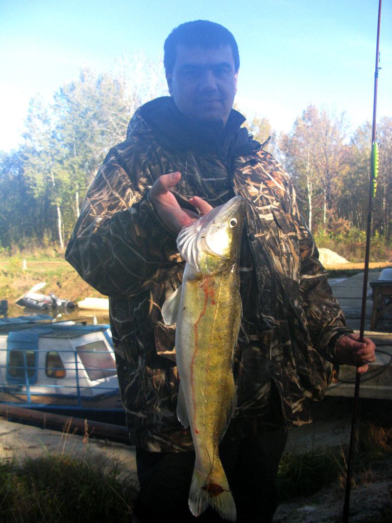 хорошая рыбалка в костромской области