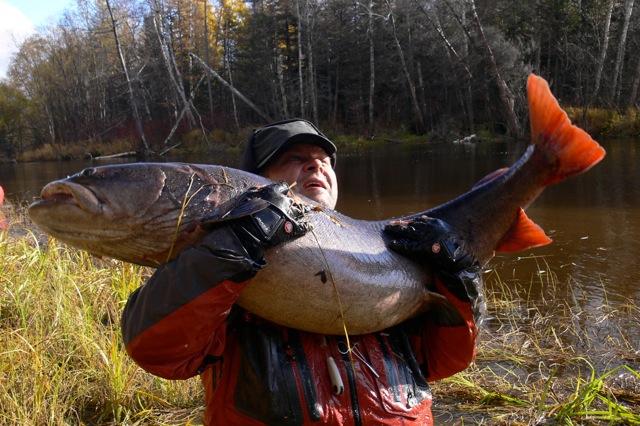 рыбалка в россии на тайменя