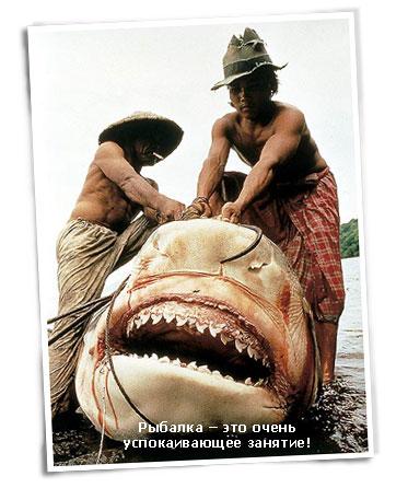 рыбаки и рыбка. часть 1