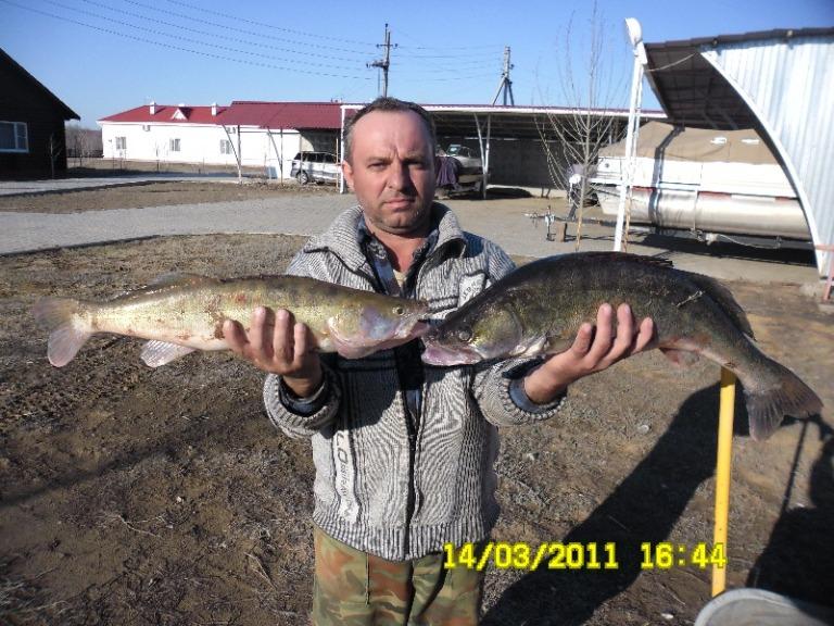 рыбалка в енотаевке астраханской области