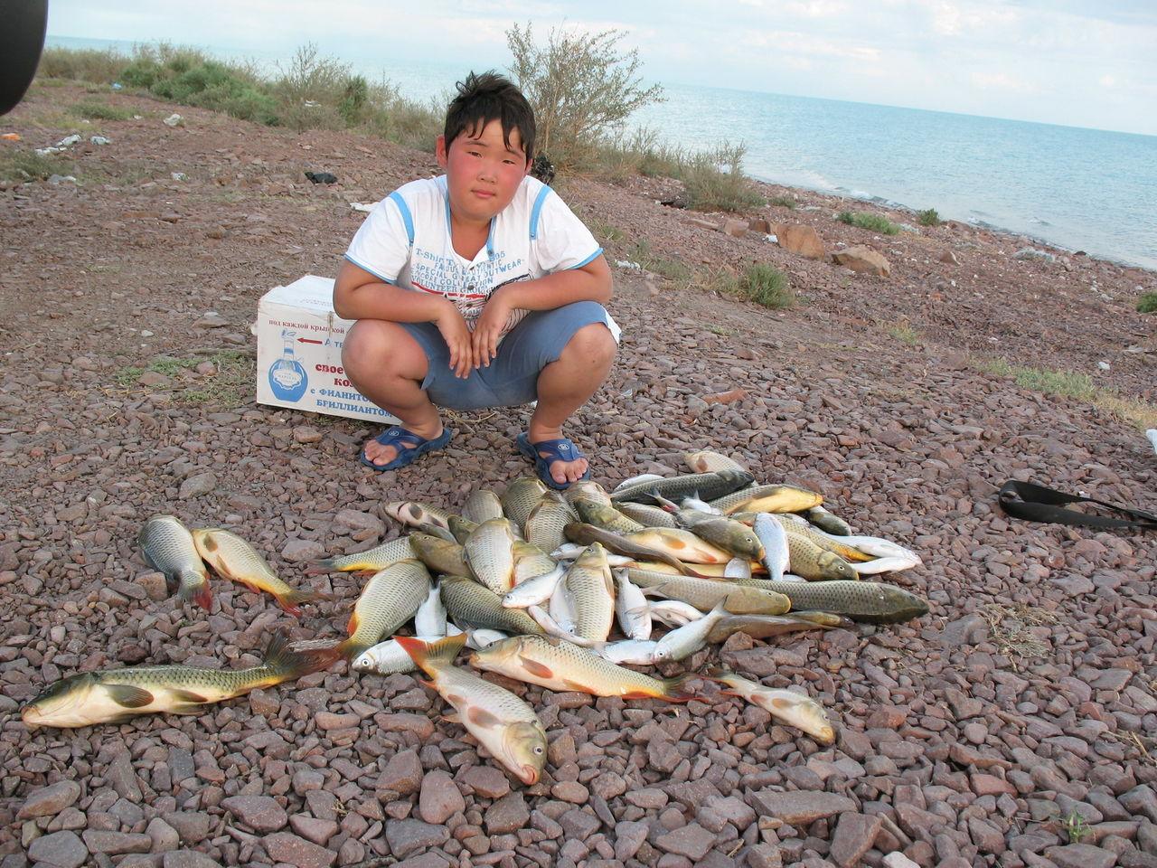 балхаш рыболовная