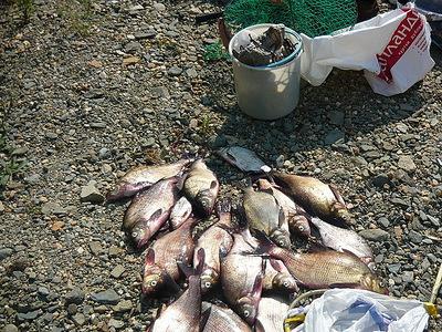озеро аять свердловская сторона рыбалка