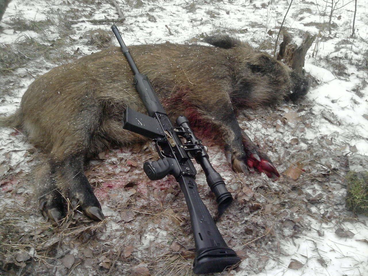какие пули использовать 223 при охоте на лося Зденка Подкапова