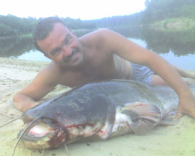рыбалка на кубани с палаткой