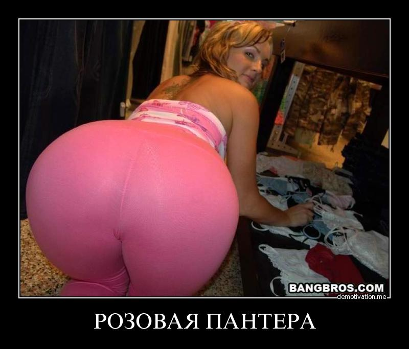 sekssnab-ru-krasnodar
