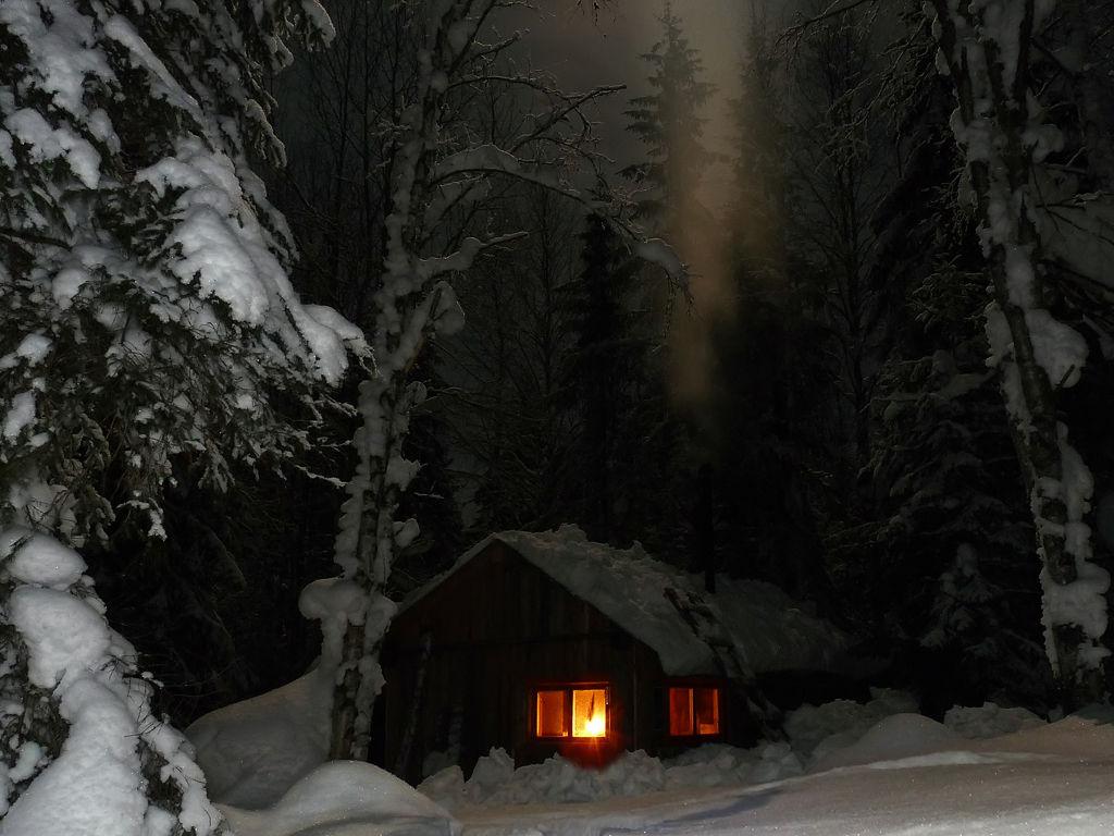 Шахназаров Михаил означегия картина зимниц лес оддинакая избушка уборка лоджии
