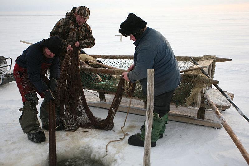 рыболовная сеть в походе