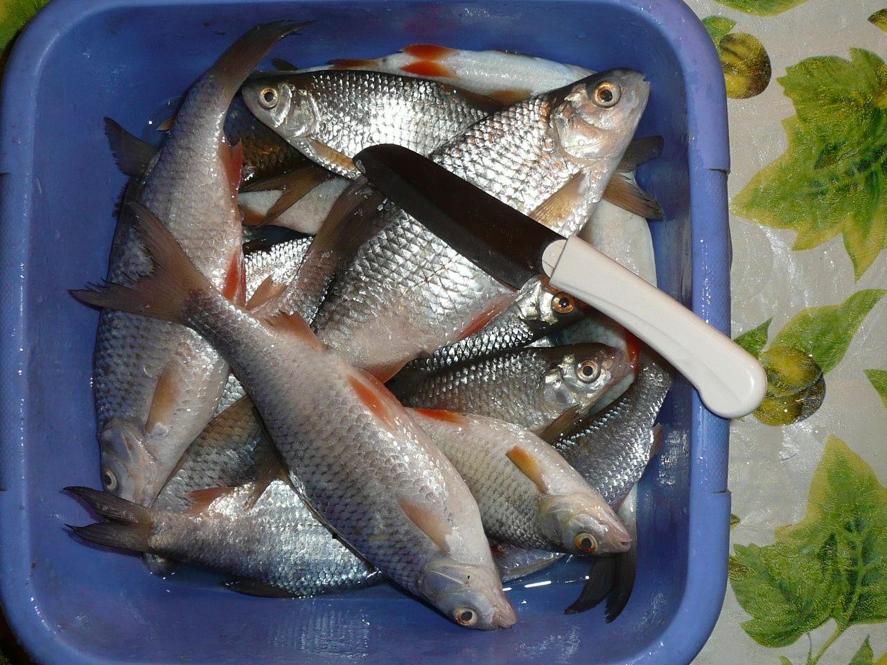 Как сделать фарш из мелкой речной рыбы